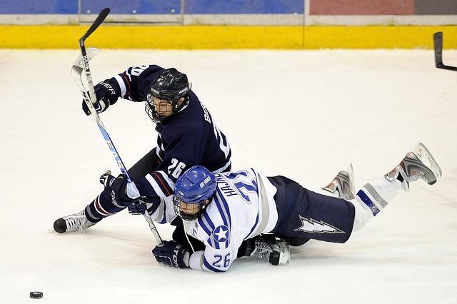 lední hokej.jpg