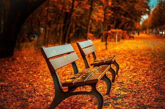 Park, lístie, lavičky